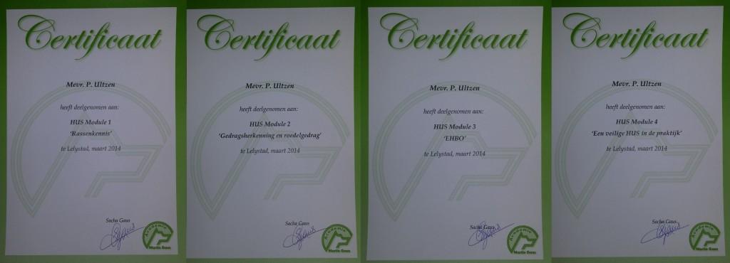 Certificaten2